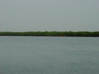 サルーム川から.jpg