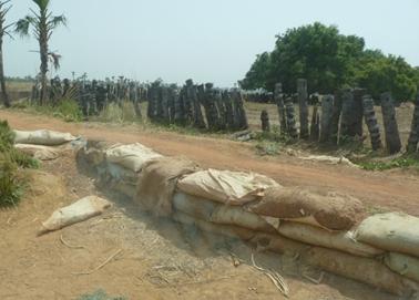 ヤシの木と土嚢を積んで風食から道路を護る.jpg