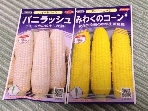 トウモロコシ白003.jpg