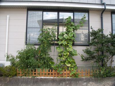 20120801saien1.jpg
