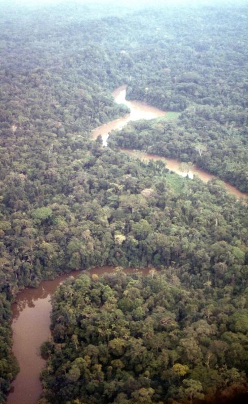 アマゾン川源流域.jpg