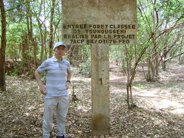 トゥムセニ国有林。.jpg