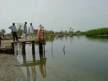 ニンドールの水路に網をつける.jpg