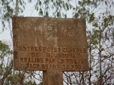 ブヌナ指定林の標識.jpg