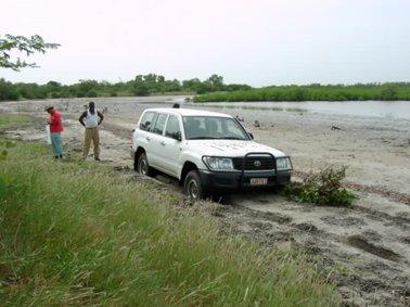 水路沿いの泥炭地のような道路.jpg