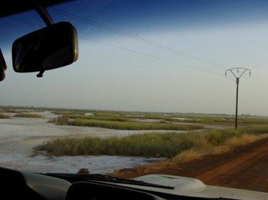 白い土はタンと呼ばれ,マングローブ地帯.jpg
