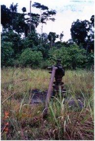 石油を自動採掘中の井戸.jpg