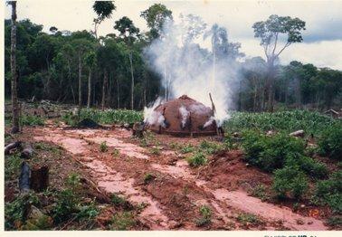 調査地内で住民が行っていた炭焼き、レンガで釜を作っている.jpg