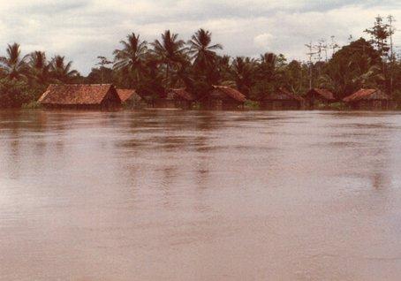 雨期の増水で水没した人家.jpg