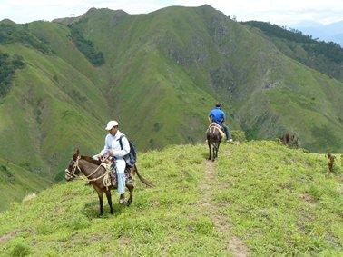 頂上までハゲ山のドミニカ.jpg