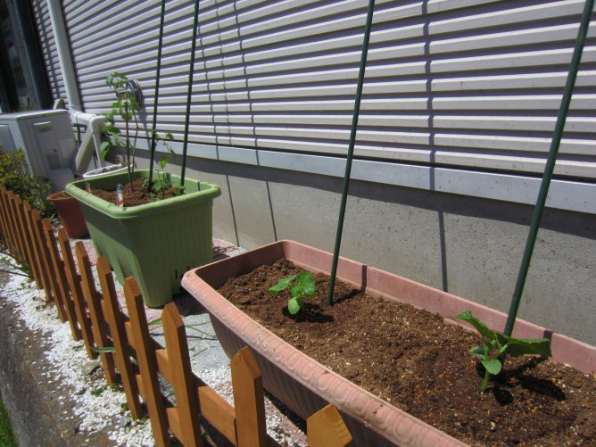 菜園.jpg